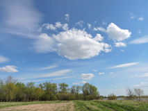 Field in spring, Lithuania Stock Photography