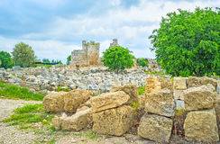 The field of stones, Perge Royalty Free Stock Photos