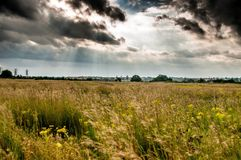 Field before the storm Royalty Free Stock Photo
