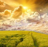 Field and stormy sky Royalty Free Stock Image