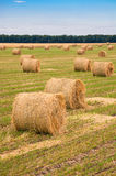 Field with straw bale. Harvested hilly wheat field with straw bale Stock Photo
