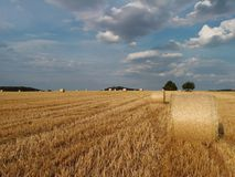 Field with straw bale Royalty Free Stock Photography