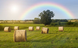 Field. Straw bales on the field with colorful rainbow in the sky Stock Photo