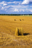 A field with straw bales after harvest Royalty Free Stock Image