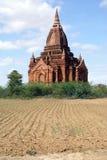 Field and stupa Stock Image