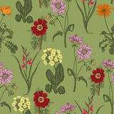 Field summer flowers. Seamless  background. Botany. Cloth, wallpaper. Bloom. Texture with floral pattern. Field summer flowers. Seamless  background. Botany Stock Images