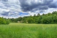 Field. Summer Landscape near Stuttgart, Germany stock photo