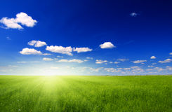 Field  and sun Royalty Free Stock Photos