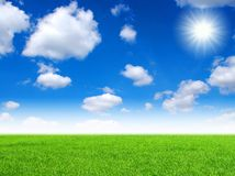 Field and sun sky Royalty Free Stock Image