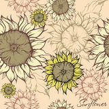 Field of sunflowers. Seamless hand drawn pattern - field of decorative sunflowers Royalty Free Stock Photo