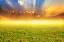 Field on sunrise background with fog Royalty Free Stock Images
