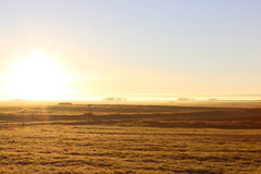 Field at sunrise Royalty Free Stock Images