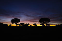 Field at sunset. In Chirivel, Almeria Royalty Free Stock Photos