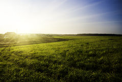 Field and sunset sky Royalty Free Stock Image