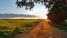 Field on the sunset. South Italy stock photography