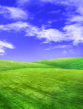 Field on sunshine Royalty Free Stock Images