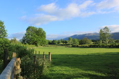 Field in Sunshine. View of field in Lake District in sunshine Royalty Free Stock Photography