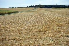 Field in Swabia Royalty Free Stock Photos