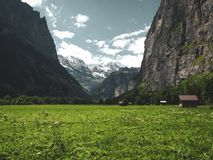 A field of flowers framed by towering cliffs with a small hut off to the right in Switzerland stock images