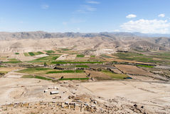 Field Terraces of Colca Canyon, Peru Stock Image