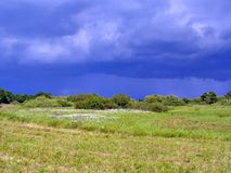 Field before thunderstorm Royalty Free Stock Image