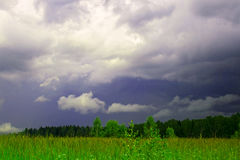 Field before a thunderstorm. Royalty Free Stock Photo