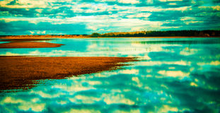 Field after the tide. Rusne region, Lithuania stock images