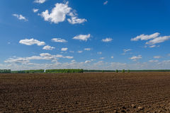 Field tillage agriculture sky. Beautiful rural landscape with plowed brown field and green trees on the edge of the field on a background of blue sky and clouds Stock Image