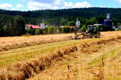 Field with tractor Stock Image