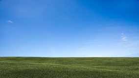 Field,tree and blue sky Stock Photography