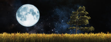 Field with a tree. Illustration of the moon and a wheat field with a tree Royalty Free Stock Image