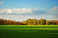 Field trees and sky Stock Photos