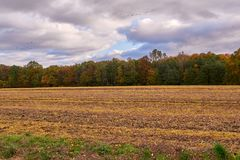 Field and trees under cloudy sky. Summer is gone, field and trees under cloudy sky Royalty Free Stock Images