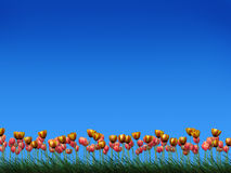 Field of tulips. Illustration of tulips on a grass field Royalty Free Stock Image