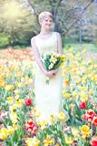 Field Of Tulips, Young Woman Stock Photos