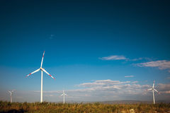 field turbines wind yellow Arkivfoton