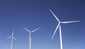 field turbines wind yellow Royaltyfri Fotografi
