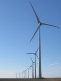 field turbines wind yellow Royaltyfria Bilder