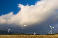 field turbines wind yellow Arkivbilder