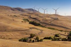 field turbines wind yellow Royaltyfria Bilder