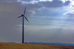 field turbinwind Fotografering för Bildbyråer
