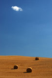 Field in Tuscany. With hay bales and a clear sky with a single cloud Stock Photos