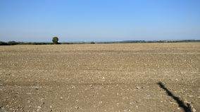 Field in the UK view royalty free stock photography