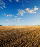 Field under blue sky. Black ploughed field under blue sky Stock Photography