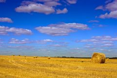 Field under cloudy sky Royalty Free Stock Photo