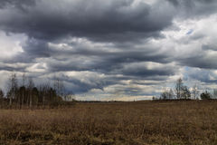 Field under cloudy sky Royalty Free Stock Image