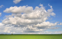 Field under cloudy sky Royalty Free Stock Photos