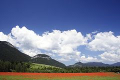 field under mountains 4 Royalty Free Stock Image