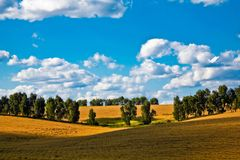 Field under sky Royalty Free Stock Images