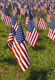 Field of United States Flags. A field of red, white, and blue US flags honoring fallen heroes who gave their lives in service of their country Royalty Free Stock Photos